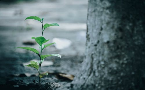 The Five Stages of Spiritual Growth You Must Know Right Now