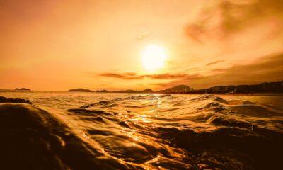 Top 30 Enlightening Quotes by Sam Harris
